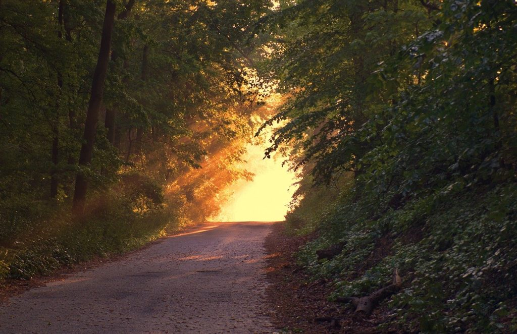 l'exil et la lumière, Zohar
